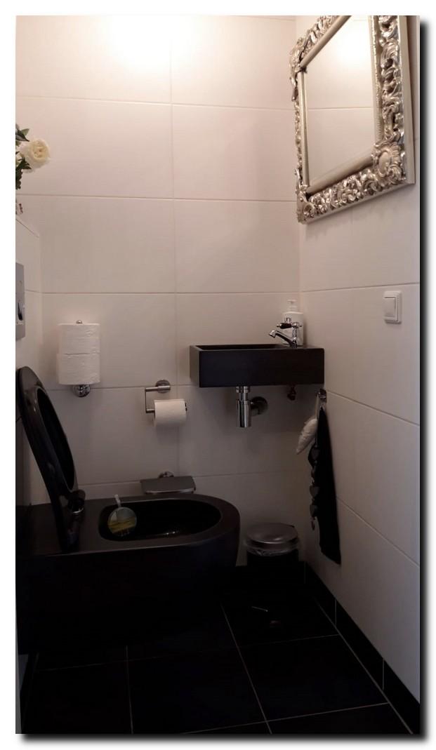 Luxe zilveren spiegel op toilet